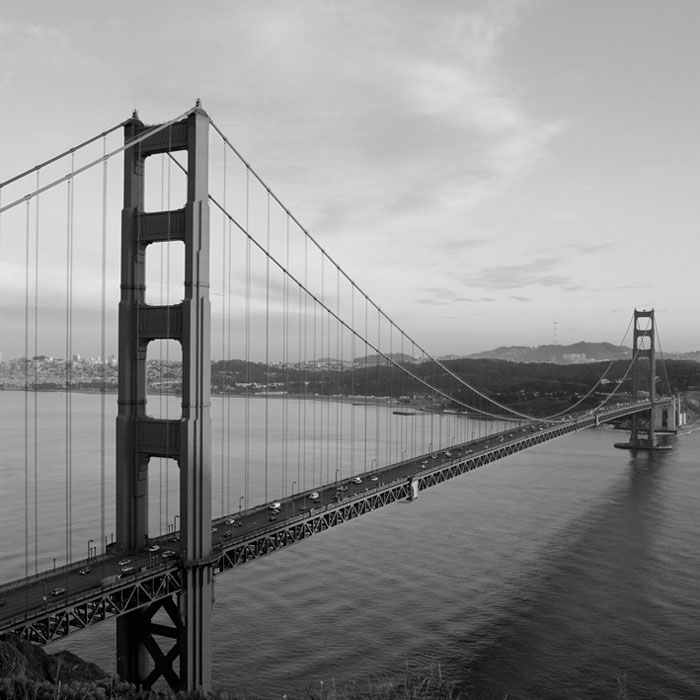 Fototapeta DIMEX Golden Gate Grey L-300| 220 x 220 cm