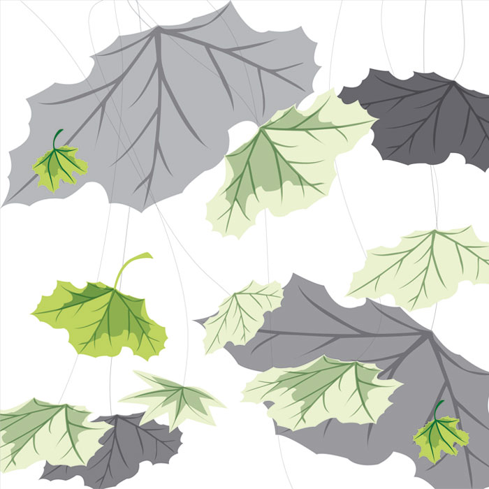 Fototapeta DIMEX Leaf on White L-333| 220 x 220 cm
