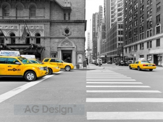 Fototapeta AG Design Taxis FT 1421| 360 x 270 cm