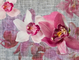 Fototapeta AG Design Pink Blossoms FT 1438| 360 x 270 cm