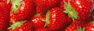 Fototapeta DIMEX Strawberry M-444| 330 x 110 cm
