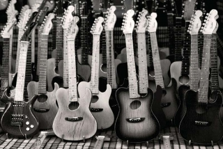 Fototapeta DIMEX Guitars Collection XL-485| 330 x 220 cm
